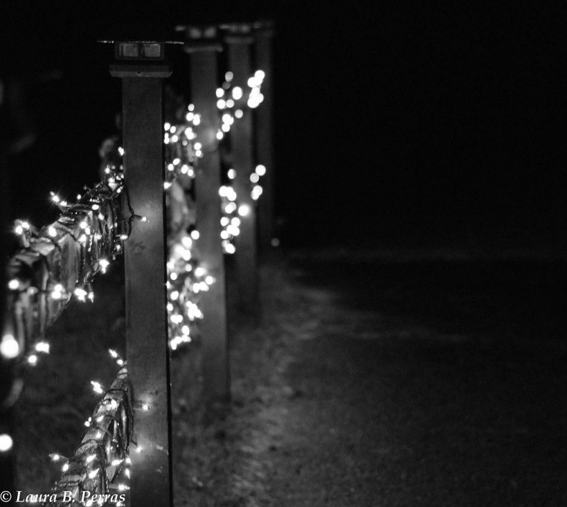 bw-outdoor-christmas-lights-2015